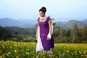 Hari priya photo shoot among yellow folwers-thumbnail-24