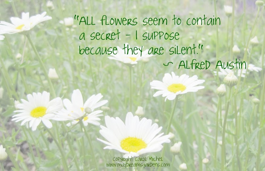 Quotes About Flowers And Happiness May Dreams Gard...