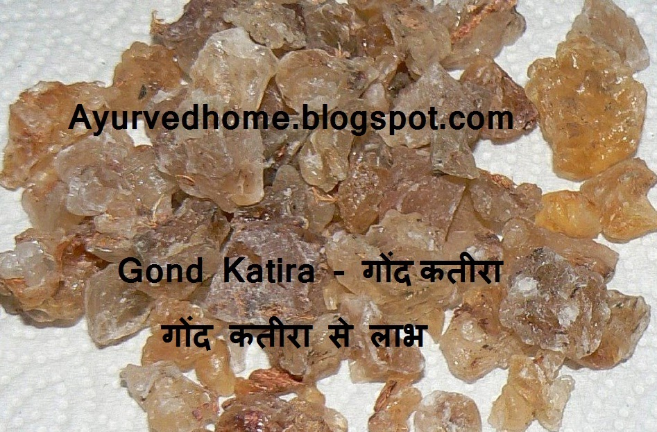 Glue Gond Katira Use and Side Effects,  गोंद कतीरा से लाभ , Glue Katira, Gond Katira, Health Benefit of Gond Katira, Gond Katira for Heart, Gond Katira for Urinal diseases,