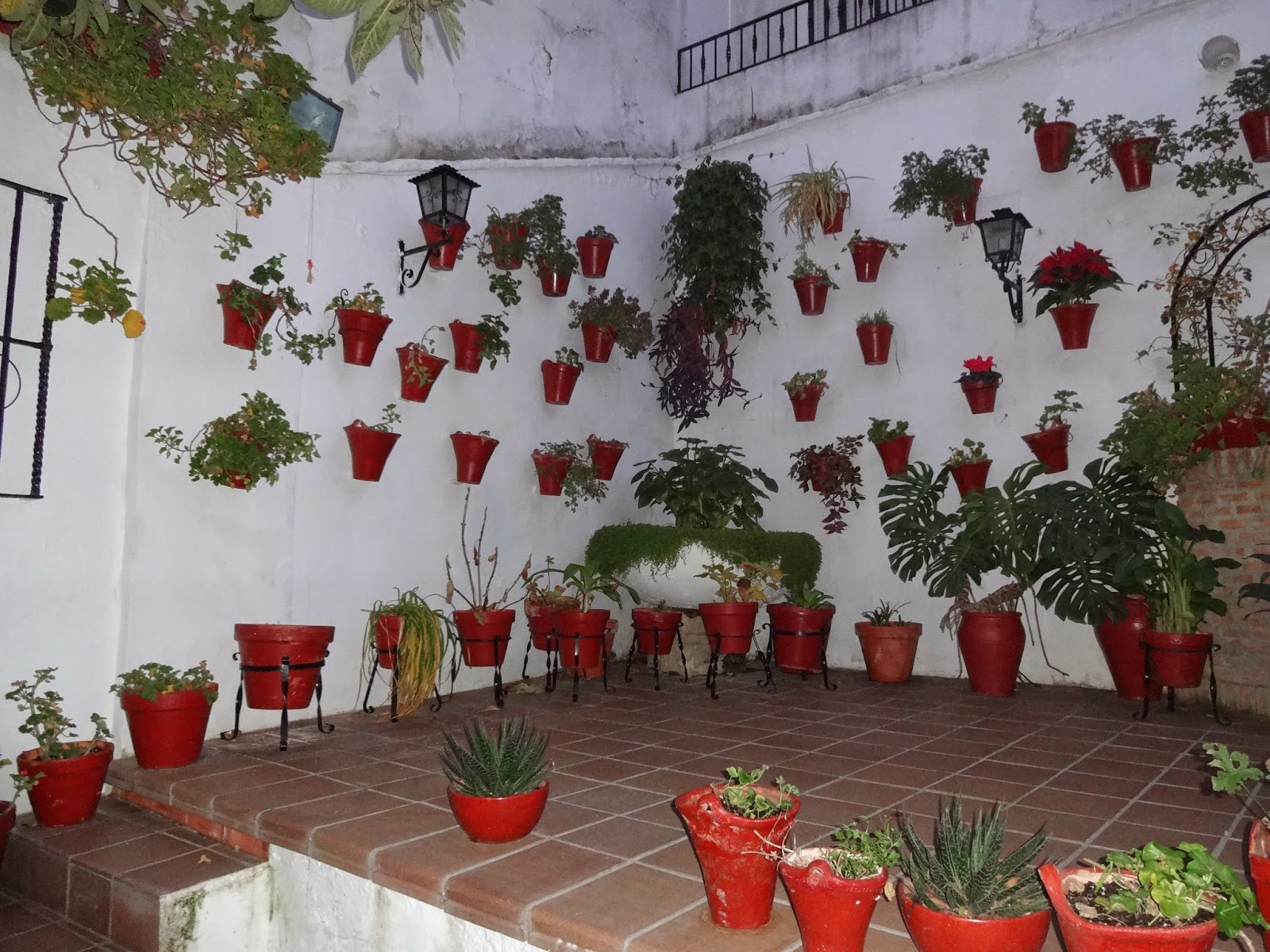 Como hacer un patio cordob s entre patios y plantas for Como decorar mi patio con plantas