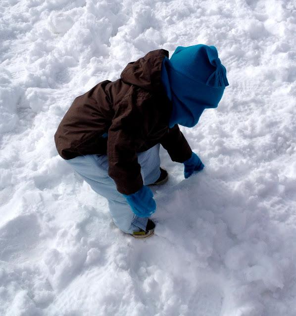 Descubriendo la nieve