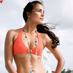 Lara Dutta Hot Body Figure Swimsuit Swimwear Pics Pictures Photos Images Scenes Hubs Wallpapers Photoshoot Spicy Bikini Girl Babe News Upcoming Movies 2010