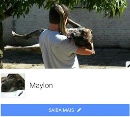 Maylon no face