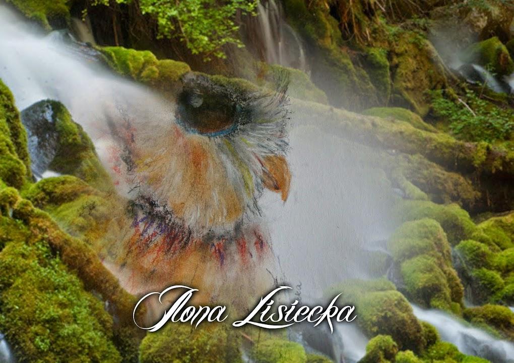 Ilona Lisiecka - Saga rodzinna