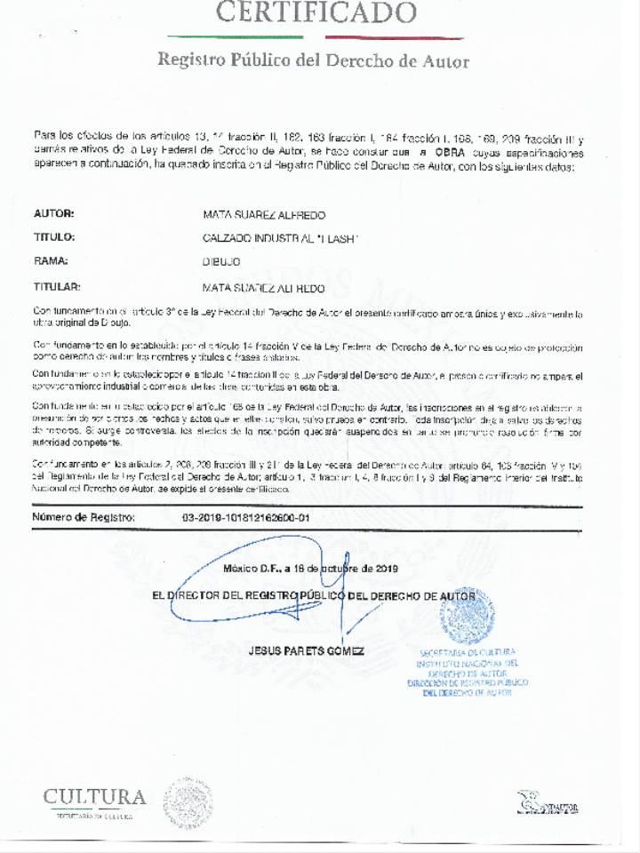 REGISTRO PUBLICO DERECHO AUTOR