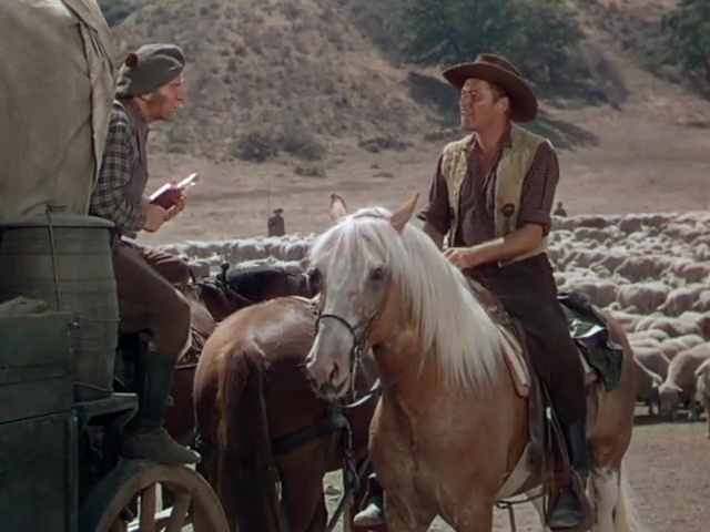 Montana (Ray Enright & Raoul Walsh, 1950) Western