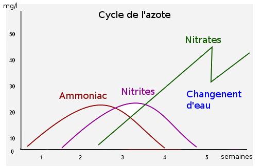 zenaqua les probl 232 mes de param 232 tres d eau partie 2 les nitrites no2