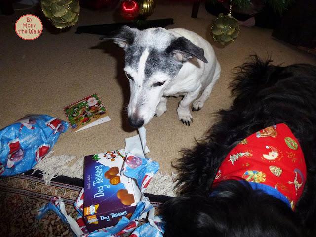Molly The Wally & More Xmas Presents 3 !