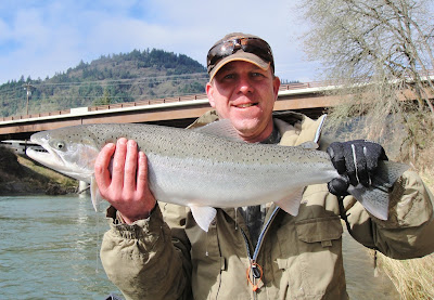 winter steelhead, umpqua river, southern oregon fishing