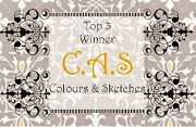 CAS - Colours & Sketches - Top 3