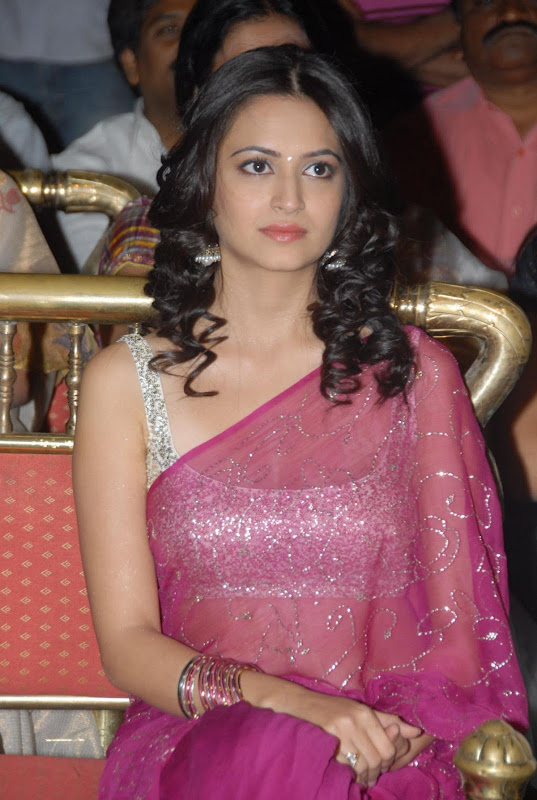 Pawan Kalyans Upcoming Actress Kriti Kharbanda In Hot Saree Stills Photos cleavage