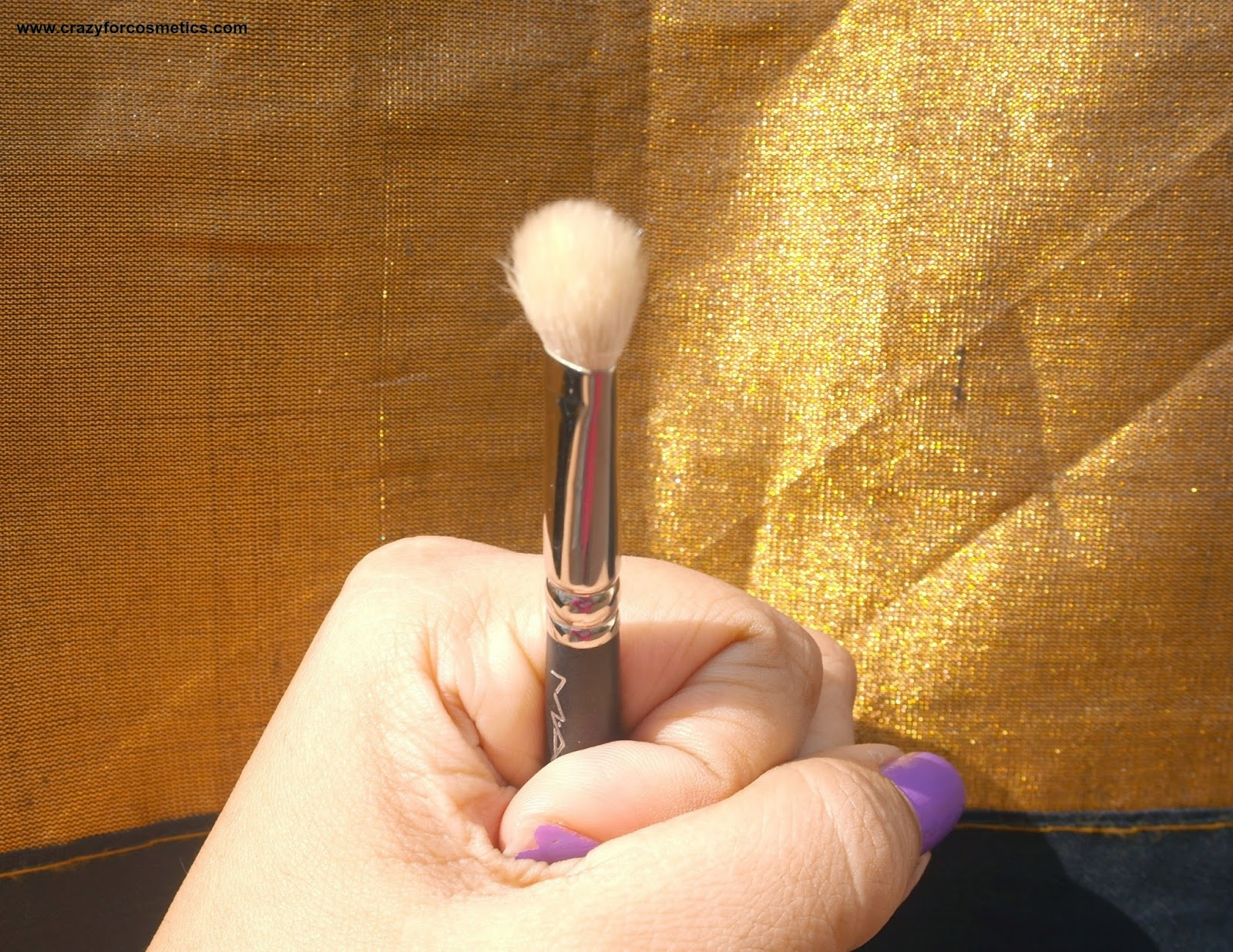 MAC 217 brush bristles