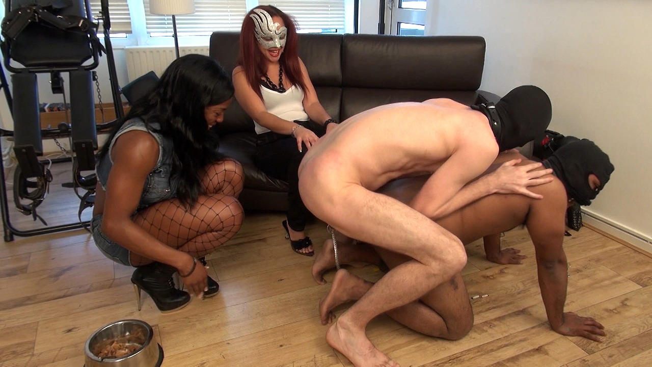 femdom-ass-porno