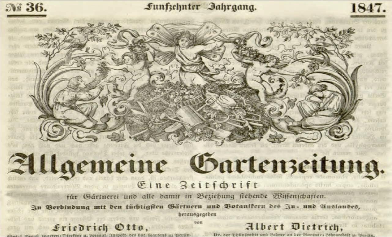 Plantas de interior: Revista Allgemeine Gartenzeitung de 1847