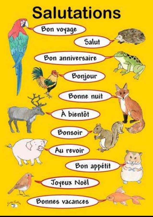 Le blog de madame birtwistle bonjour a va the children started off by learning various ways of greeting someone in french m4hsunfo
