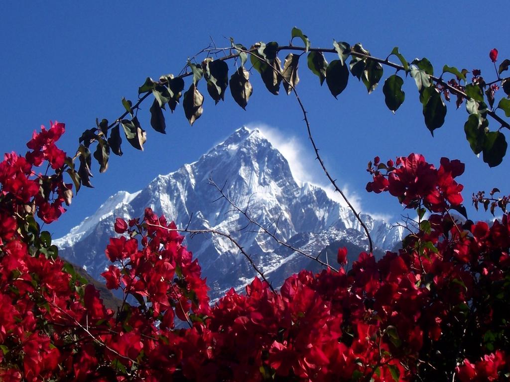 http://2.bp.blogspot.com/-IB6jG-bgzO8/TWEJXdjGHHI/AAAAAAAABdI/J6l3_w5VJIg/s1600/himalaya_nepal.jpg