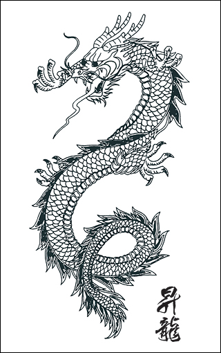 feminine dragon tattoos