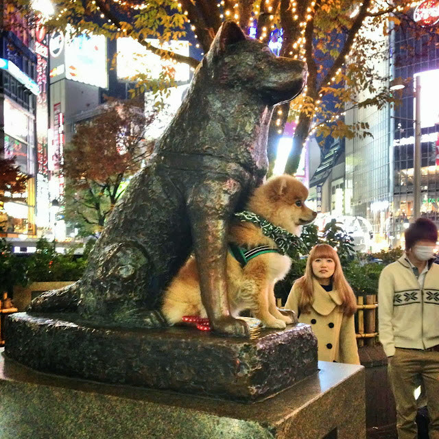 adorable dog pictures, cute dog pose with hachiko statue