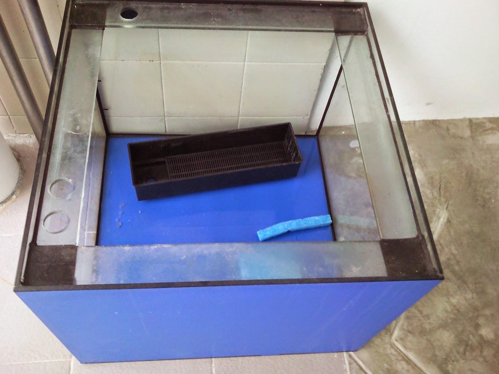 Tropical Fisher Man Fish Tanks And Aquarium CRS: New Square Fish Tank
