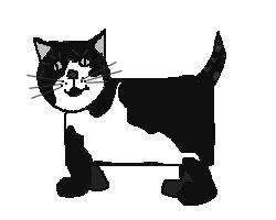 Hugh the cat