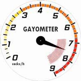 Forum reorganization completed Gay-Meter