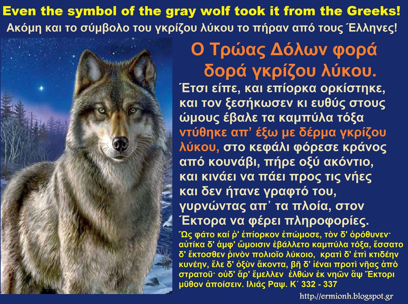 Ακόμη και το σύμβολο του γκρίζου λύκου το πήραν από τους Έλληνες!