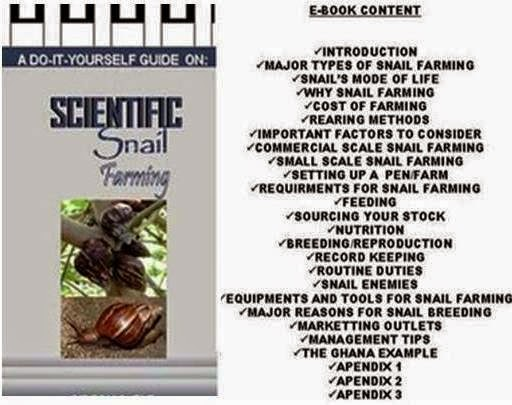 Practical Heliculture (Snail Farming) Business Guide