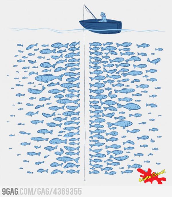 pescaria, peixe, eeeita coisa