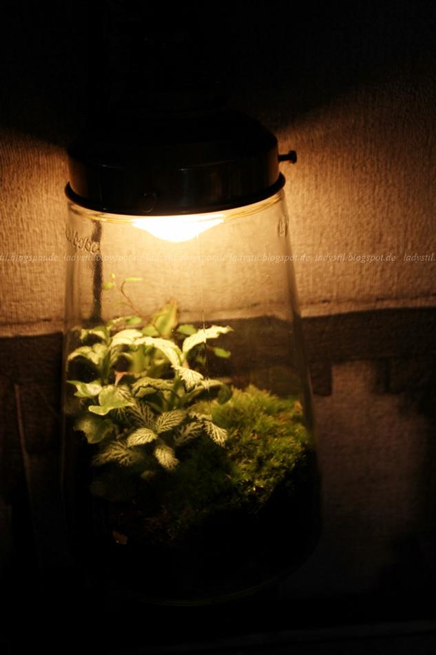 Pflanzen in einer leuchtenden Lampe auf der vt wonen en design beurs in Amsterdam 2015