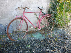 The old red bicycle
