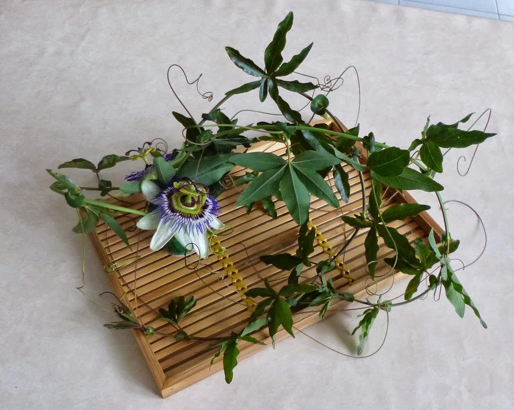 je m 39 clate avec mes 10 doigts un bouquet avec deux fleurs de passiflore. Black Bedroom Furniture Sets. Home Design Ideas