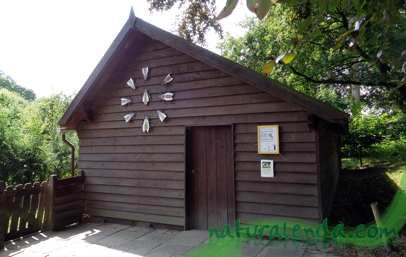 la casa de las abejas