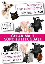 animali tutti uguali
