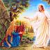 Xin Chúa Phục Sinh Ban Hòa Giải, Hòa Bình Hòa Hợp Cho Các Vùng Có Xung Khắc Chiến Tranh Và Bạo Lực Trên Thế Giới