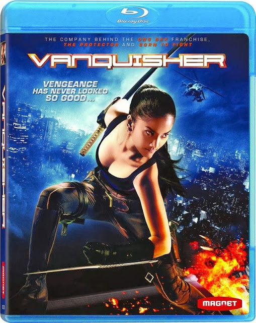 The Vanquisher 2009 Hindi Dubbed BRRip 300mb