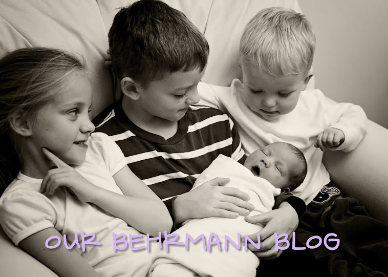 Our Behrmann Blog