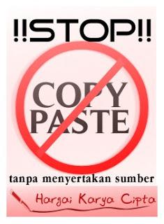 Stop Copy Paste