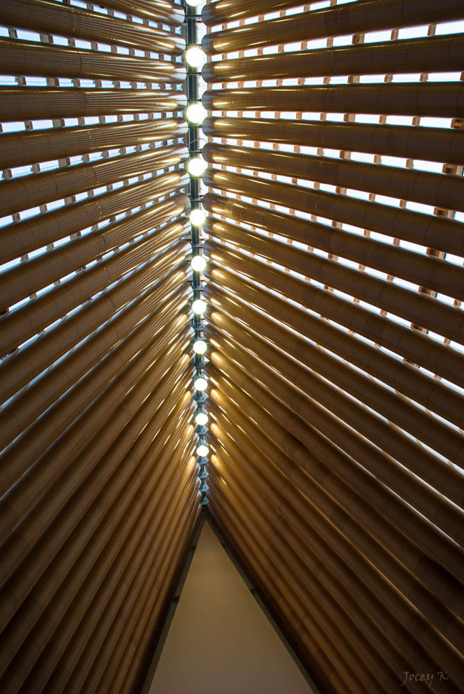 Real life is elsewhere cardboard cathedral for Architects creative christchurch
