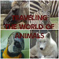 http://adventuresofallergymom.blogspot.ca/2015/05/10-tips-to-best-enjoy-zoo-with-your.html