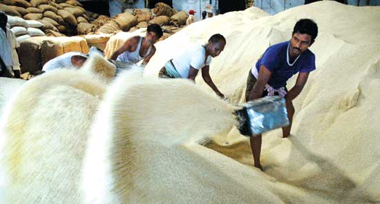 Rice Procurement Crosses 341 Lakh Tonne