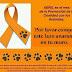 Actua en favor de la prevenció davant la crueltat amb els animals