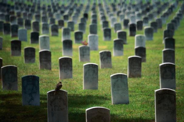 «Eκατόμβες νεκρών» ετοιμάζει η κυβέρνηση. του Άρη Χατζηστεφάνου