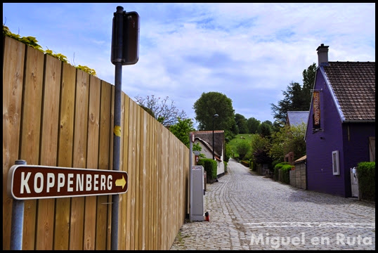 Koppenberg-Ardenas-Flamencas