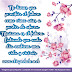 Frases de Superación para compartir en Facebook