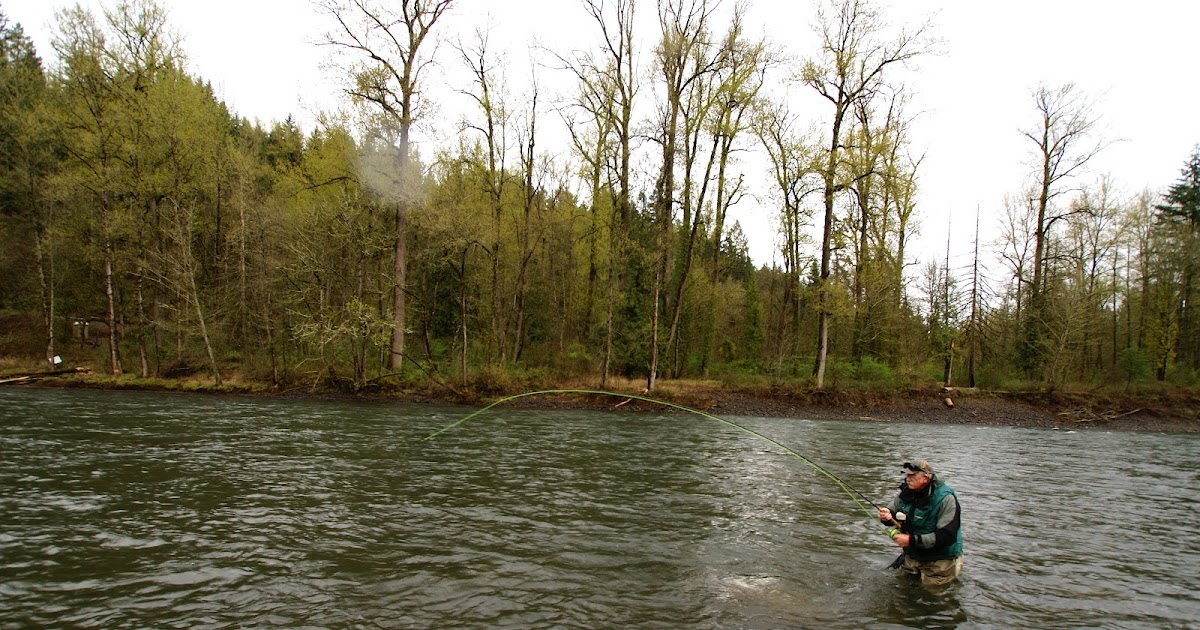 Fly fish oregon water time report steelhead fishing the for Trask river fishing report