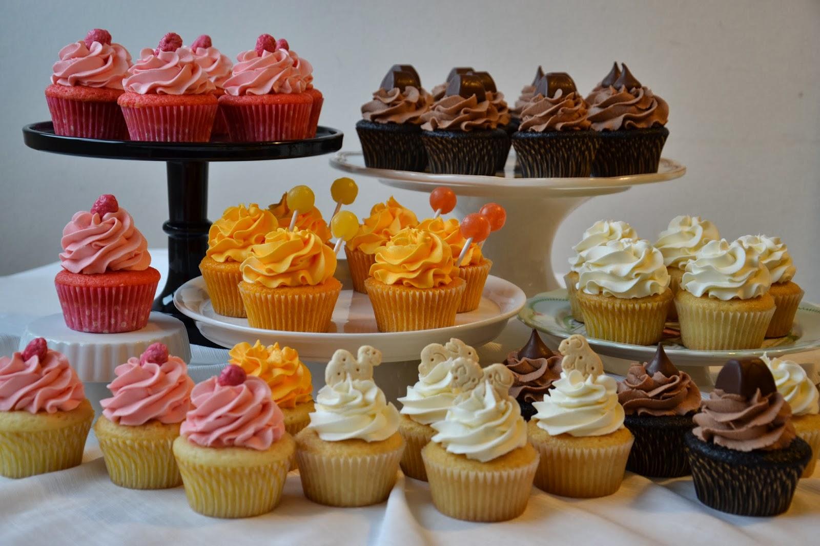 The Sugary Shrink 3rd Grade Bake Sale Cupcakes
