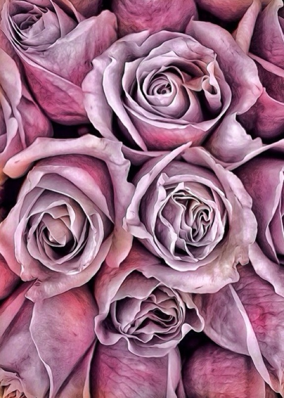 Painted Roses © Geri Centonze