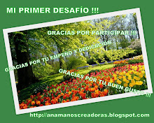 PRIMER DESAFIO DE ANAMA