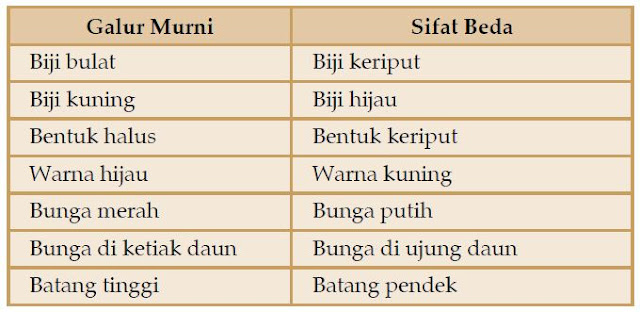 Percobaan Hukum Mendel pada Kacang Kapri (Ercis)
