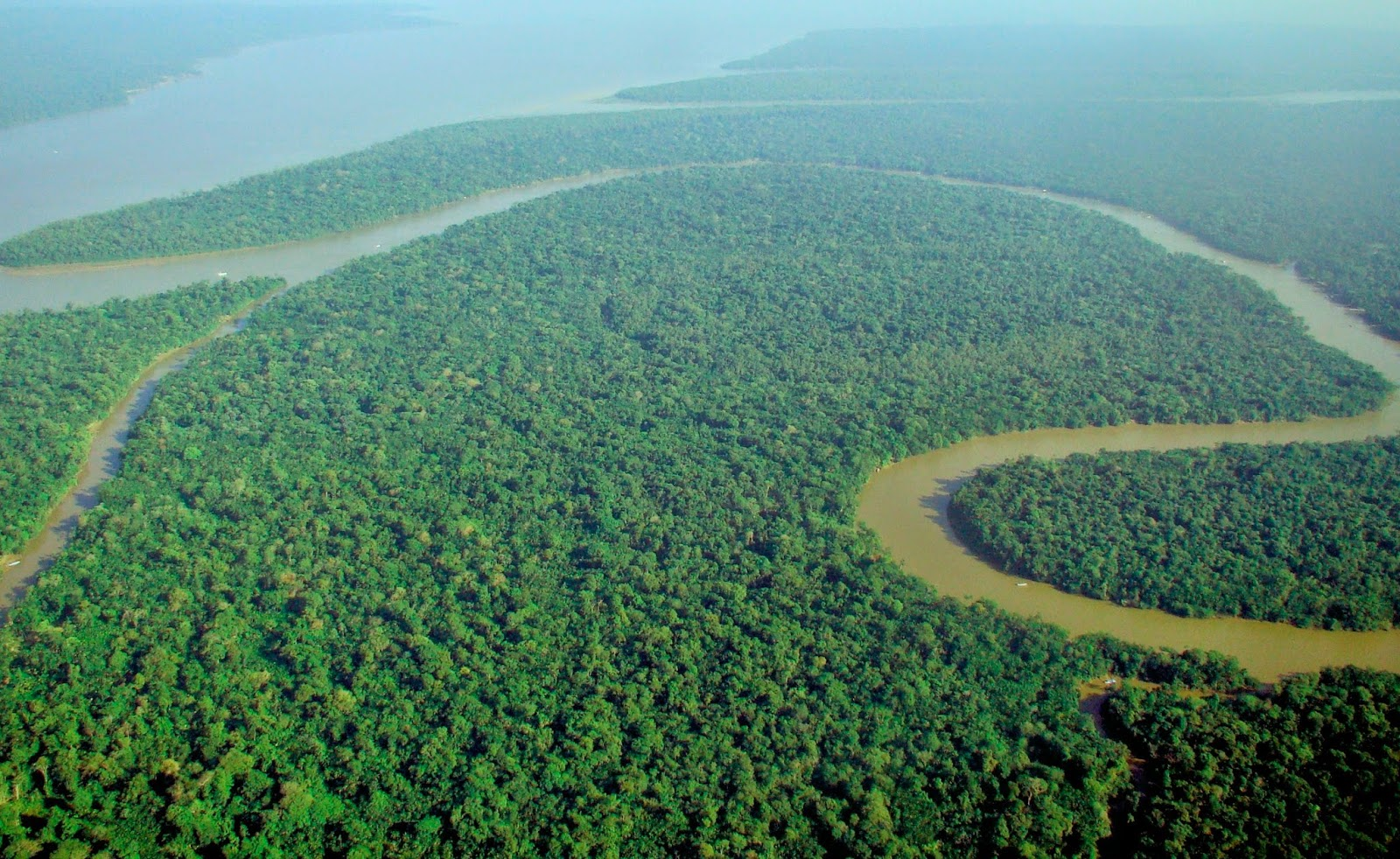 the Amazon, though not the one we're talking about in the article